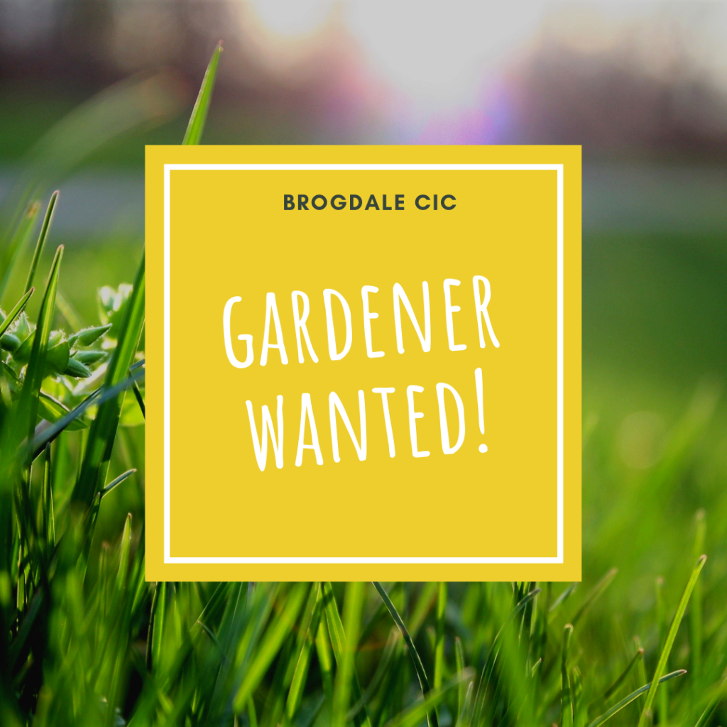 picture of grass in a garden covered by a yellow square with the words 'gardener wanted!' written on it